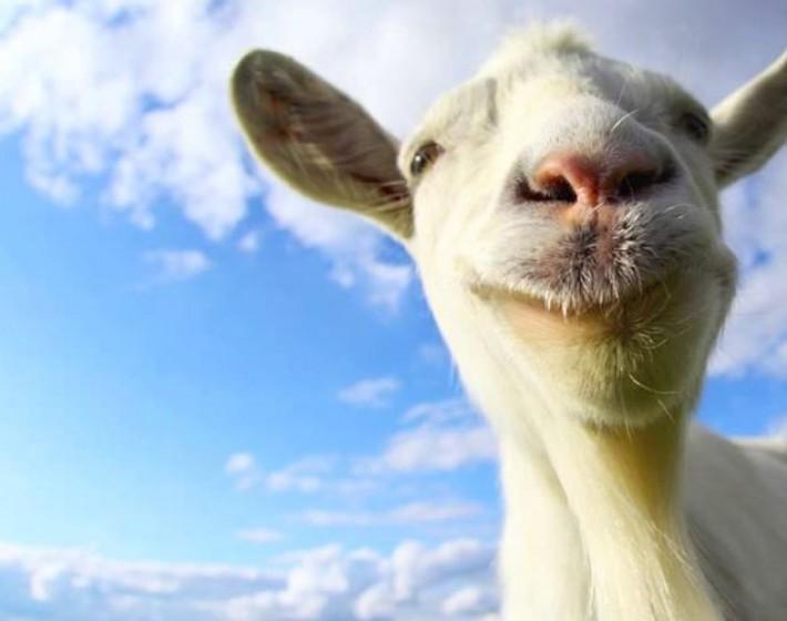 Atualização de Goat Simulator chega dia 3 de junho