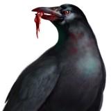 "Corvos – ""Os Pássaros"" de Resident Evil"
